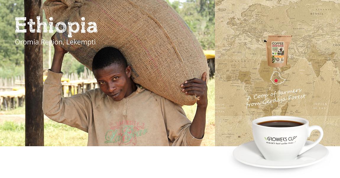 Kava iš Etiopijos