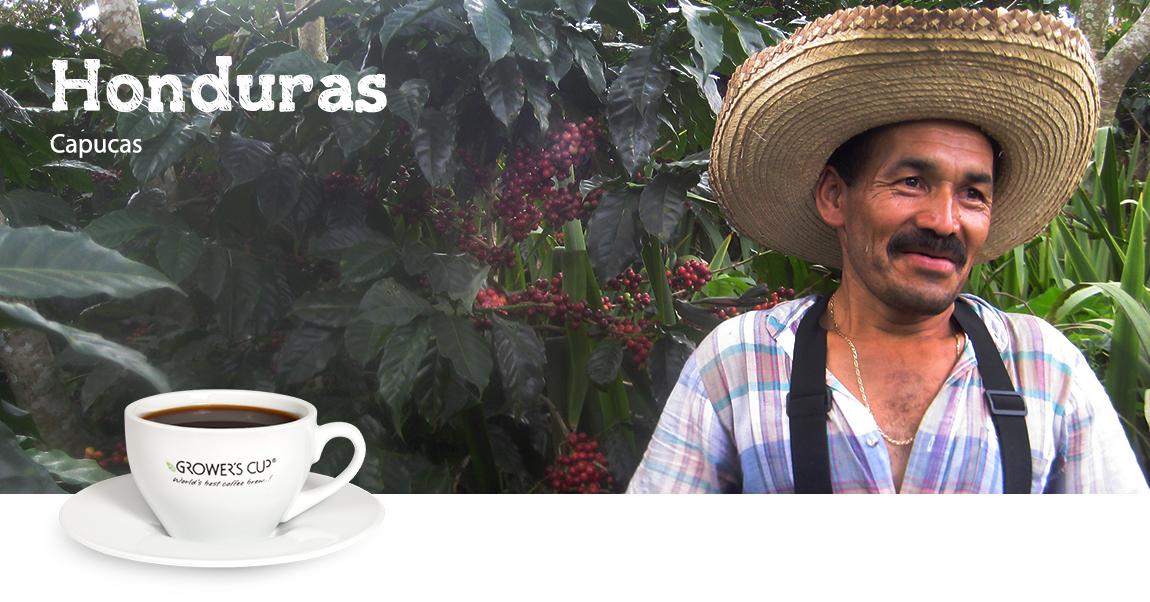Kava iš Honduro
