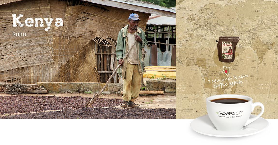 Kava iš Kenijos